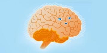 大脑发育开始啦!你的宝宝正经历这些